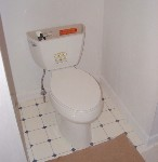 ADA compliant handicapped accessible toilet